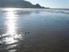 Pacifica Low Tide-07